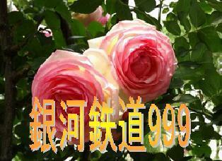 ginga9990801.jpg