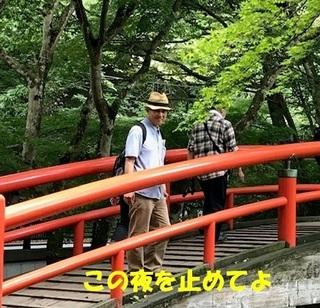 kajikabashi.jpg