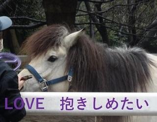 love05.jpg