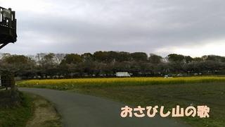 minuma2.jpg